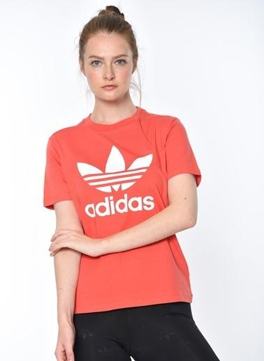 adidas Baskılı Tişört Renkli